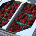 Fresh, local strawberries from South Fork Farm