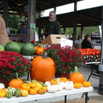 Assortment of Autumnal Goodies from Buck Island Creek Farm
